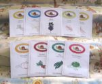 Kid's Vegetable Garden Seed Collection - St. Clare Heirloom Seeds