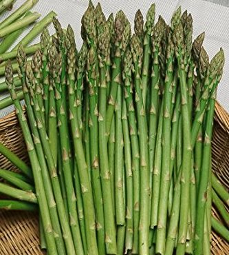 Asparagus - Mary Washington - St. Clare Heirloom Seeds