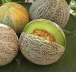 Rocky Ford Cantaloupe - St. Clare Heirloom Seeds