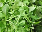 Arugula Roquette Herb - St. Clare Heirloom Seeds