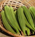 Okra- Clemson Spineless - St. Clare Heirloom Seeds