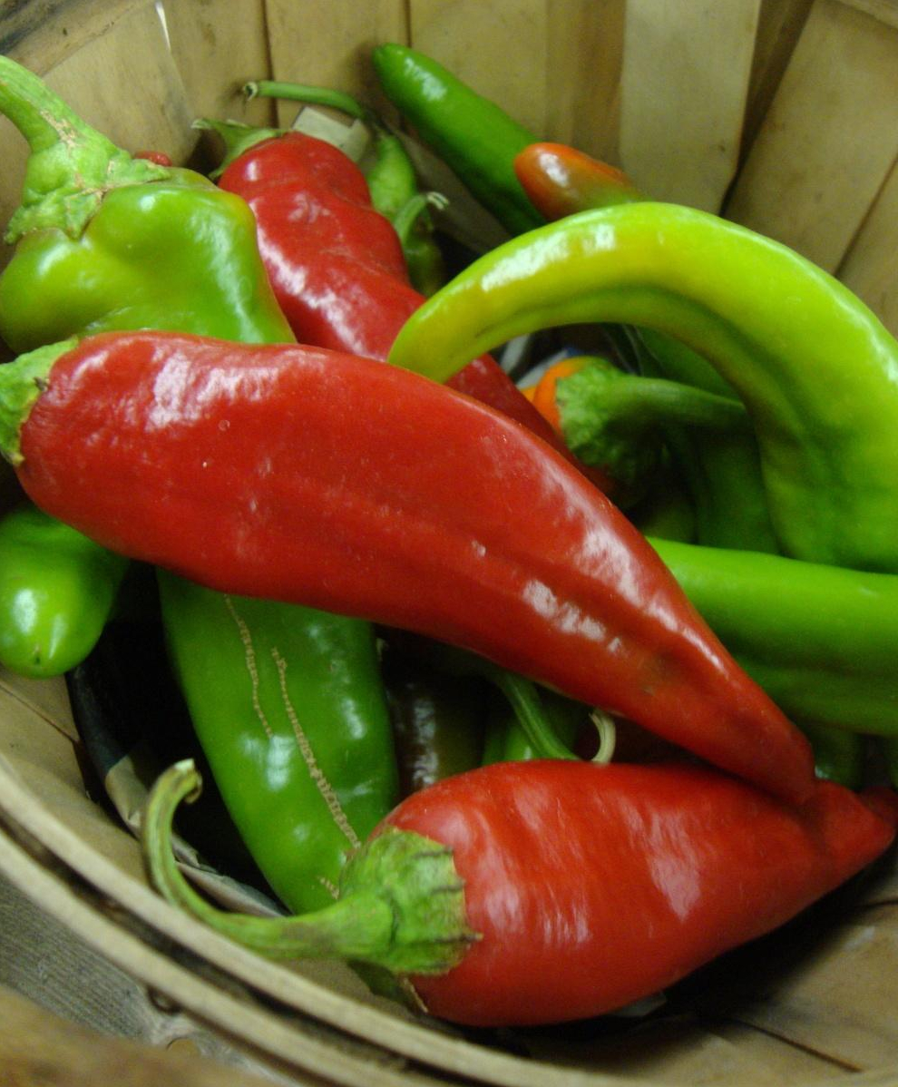 Hot Pepper Anaheim St Clare Heirloom Seeds Heirloom And Open Pollinated Vegetable Flower And Herb Garden Seeds