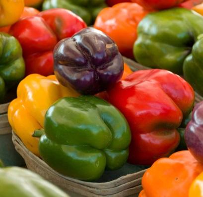 Rainbow Bell Sweet Pepper Blend - St. Clare Heirloom Seeds