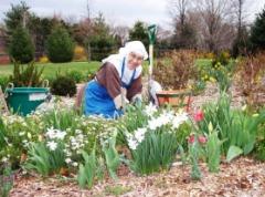 Poor Clare in the Garden